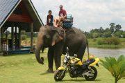 südostasien-motorradtour